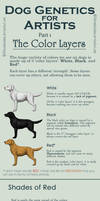 Dog Colors for Artists- part 1