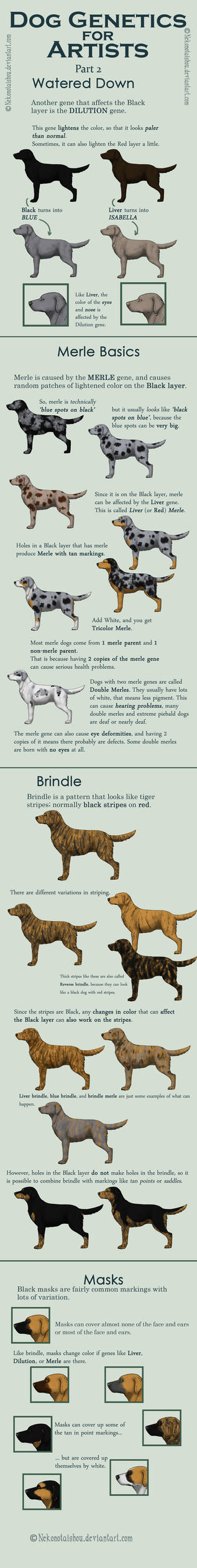 Dog Colors for Artists- part 2