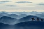ROF - Rolling Fog Mountains