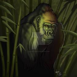 MMM 2020- Gorilla round 6 collab