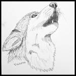 Inktober 2019 - Wolf