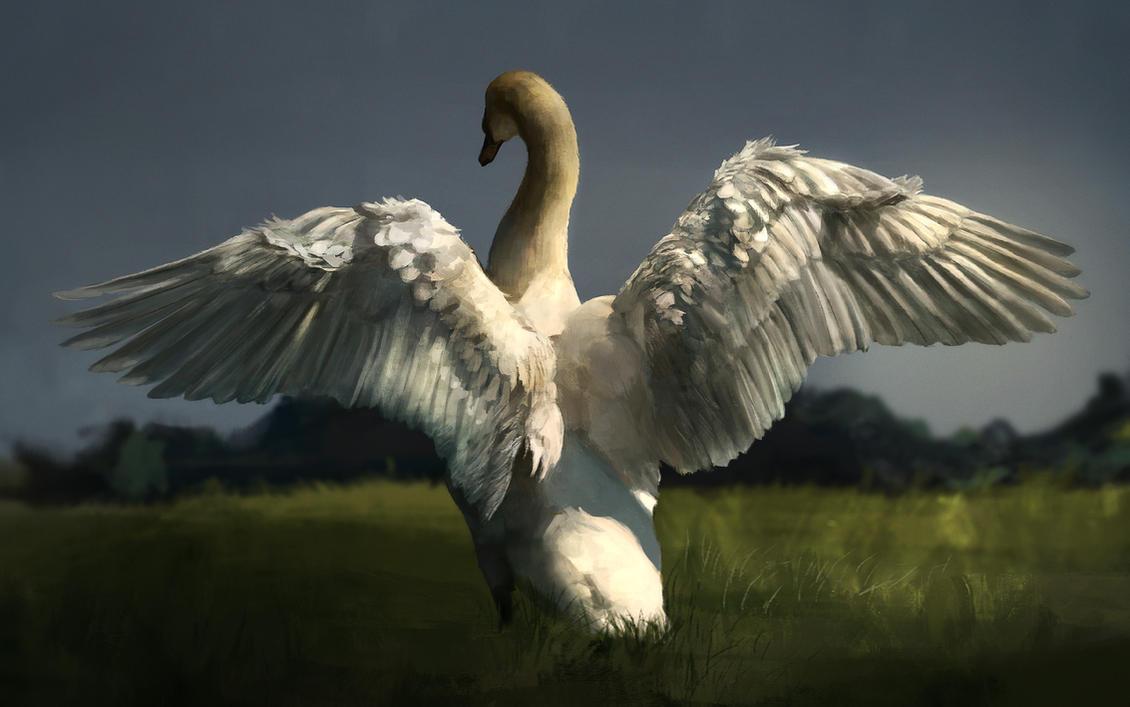 Swan painting study by Ketunleipaa