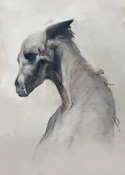 Skull by Ketunleipaa