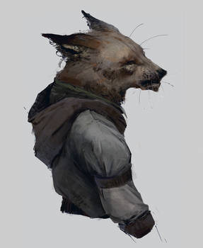 Fox fella