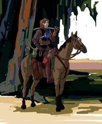 SWTCWAU - Skywalker on horseback