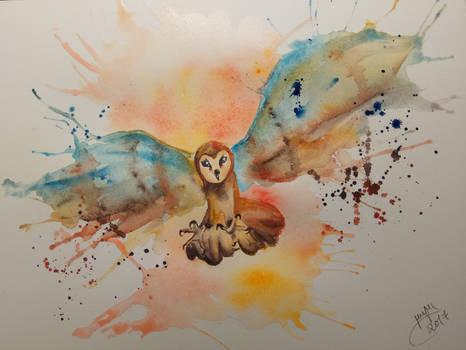 Barn Owl   SPEEDPAINT in the description