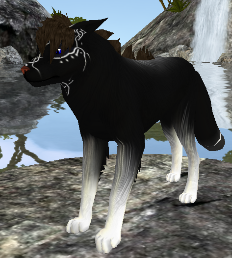 feral heart love will find a way Feral heart user and pass user for feral heart: ravenflight13 password for feral heart: can't find a community you love.