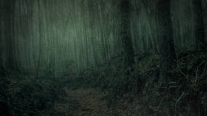 Dark Forest by Brizzolatto55