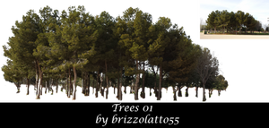 Trees 01 by Brizzolatto55