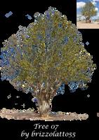 Tree 07 by Brizzolatto55