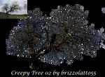 Creepy Tree 02