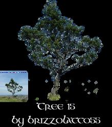 Tree 15 by Brizzolatto55