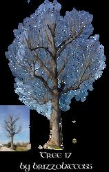 Tree 17 by Brizzolatto55