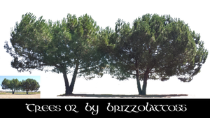 Trees 02 by Brizzolatto55