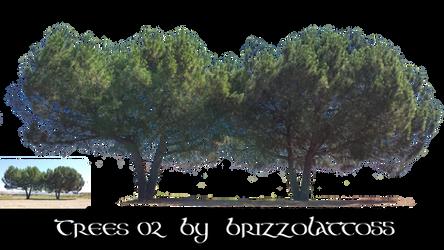 Trees 02 by Brizzolatto55