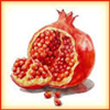 Icon - Pomegranate by fmr1