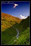 Valea Radului III