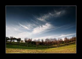 Dreaming Day II by iustyn