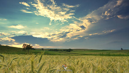 Sky on the country
