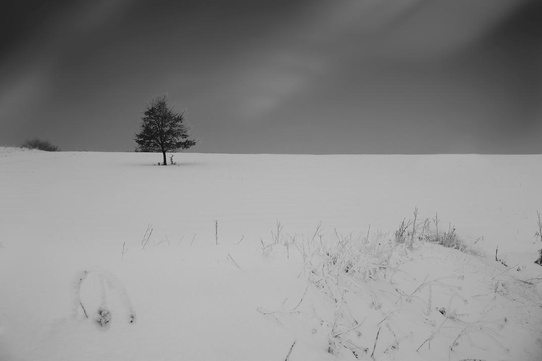 Alone by iustyn