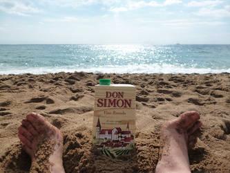 Don Simon The Great by mariakovalchuk