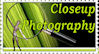 Closeup-Photography Stamp by AmethystUnderwood