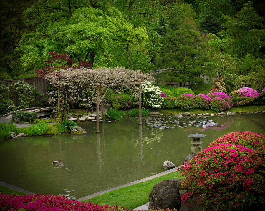 Spring Gardens by AmethystUnderwood