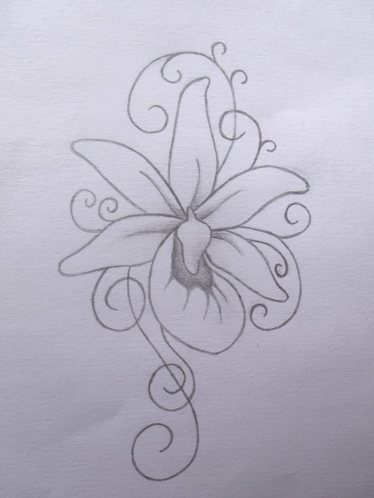 Lady Slipper Orchid Tattoo By Squeener On DeviantArt