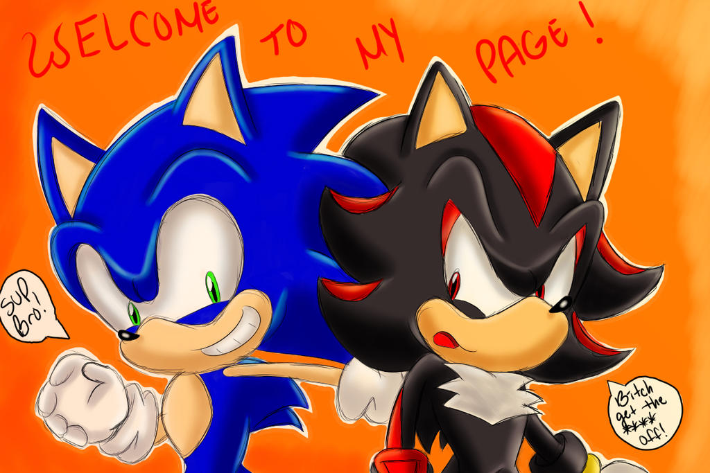 Welcome To My Page : Sonic and Shadow by SonicForTheWin2 on DeviantArt