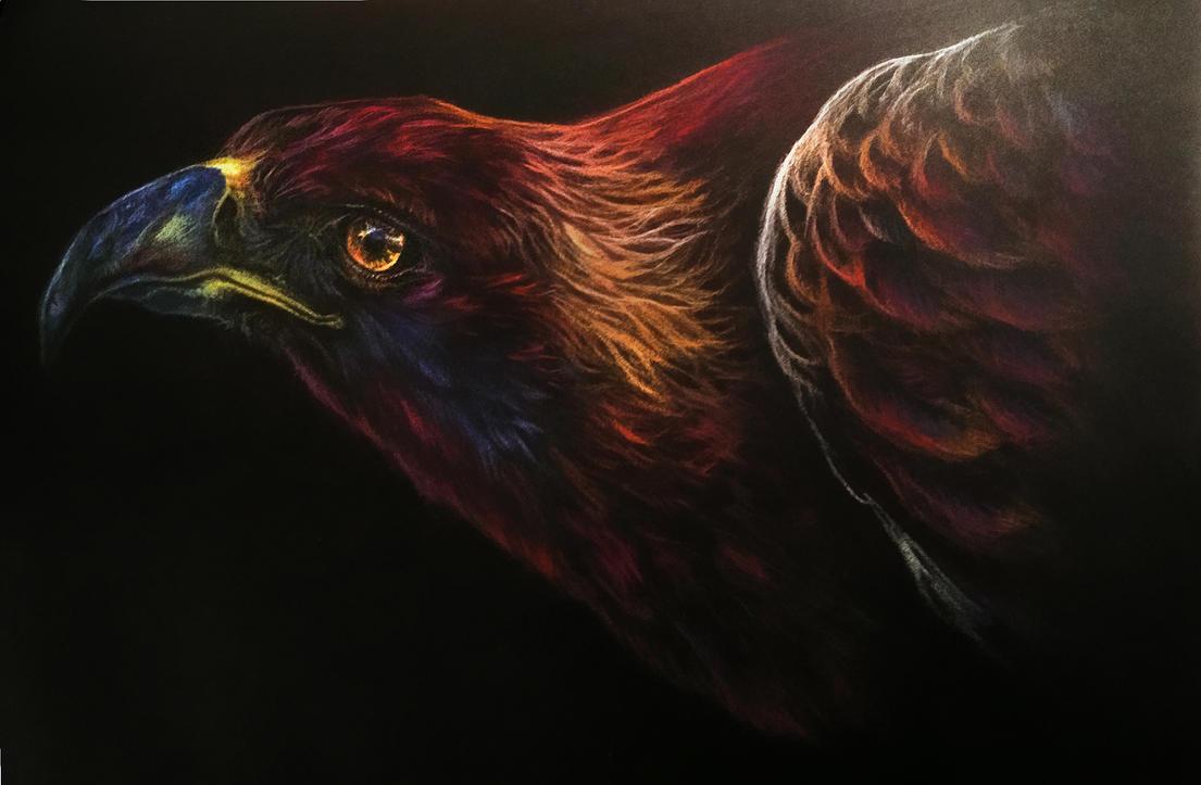 Golden Eagle Pastel by Elsouille