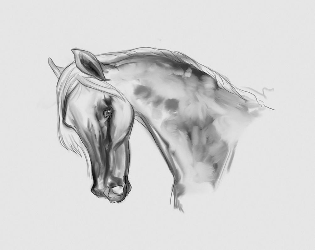 10 min sketch by Elsouille