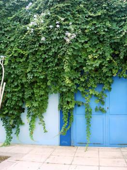 foliage door
