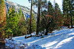 Yosemite 2016 21