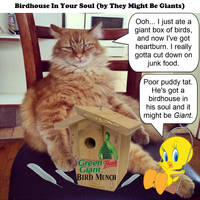 birdhouse in your soul - they might be giants - JO by dgoldish
