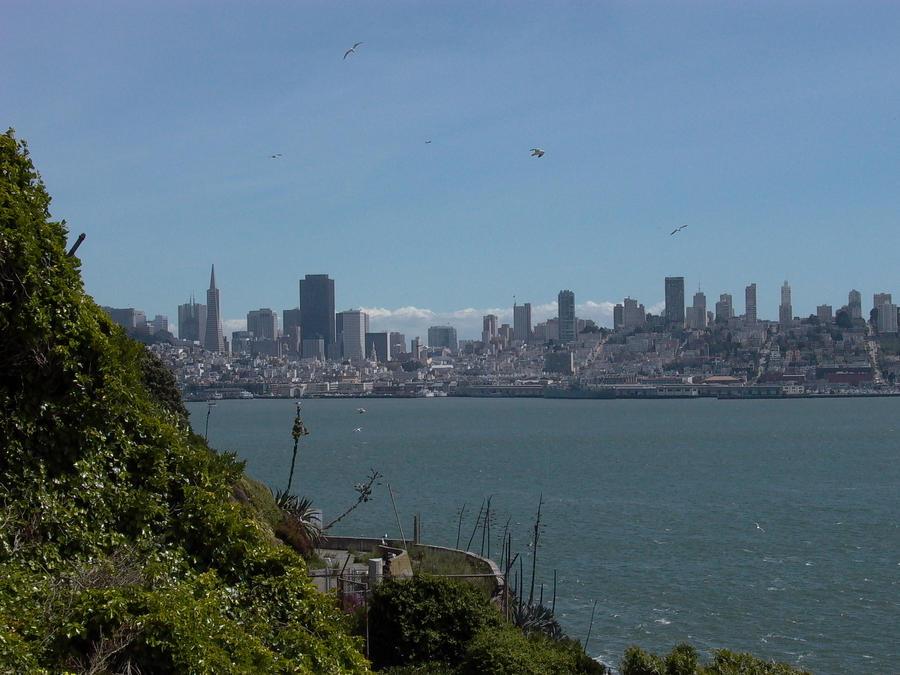 San Fran Skyline by TheRealOneEye