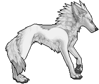 FREE COYOTE POSE by helena1290