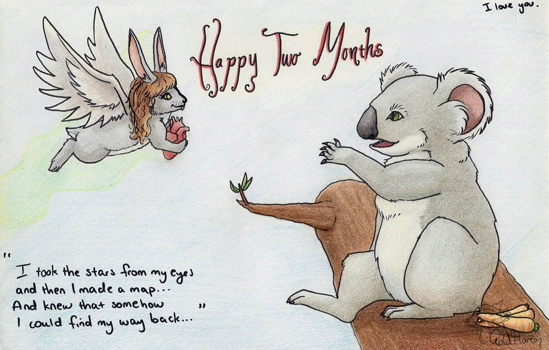 Two Month Koala by GoldFlareon