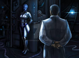 Liara. Notes of the researcher