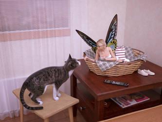 Fairy in Cat's Basket by pnn32