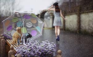 Saving kitties from heavy rain by pnn32