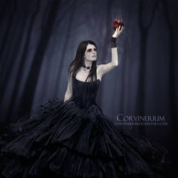 Heart Of Night by Corvinerium