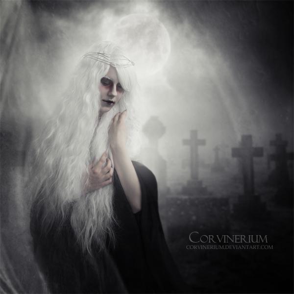 Cuemeterium by Corvinerium