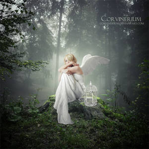 Free by Corvinerium