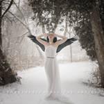 Swan by Corvinerium