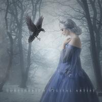 Frozen Heart by Corvinerium