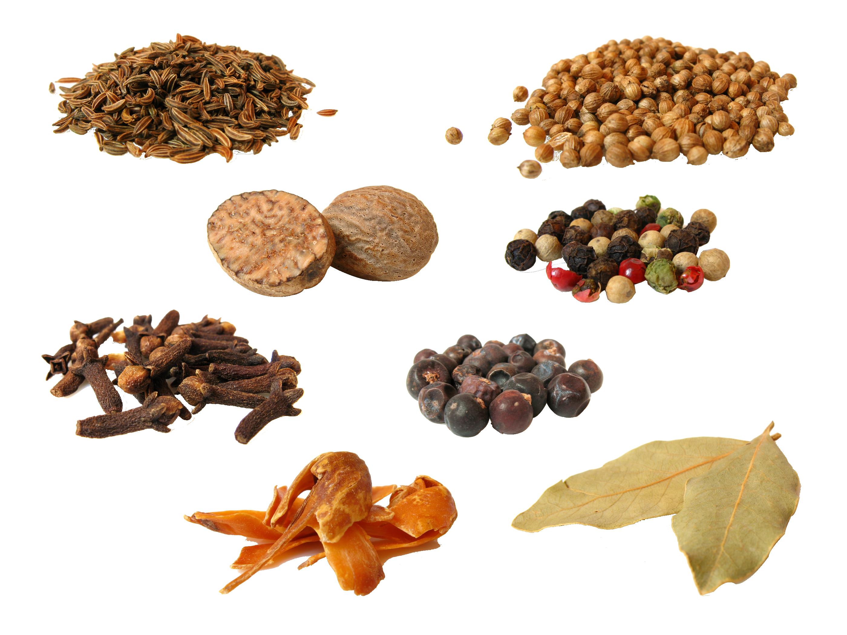 Spices By Sadstar On Deviantart