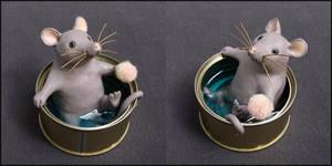 Rat-thon laveur