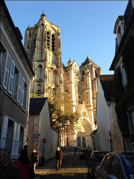 Bourges Cathedral in the Evening Sunlight