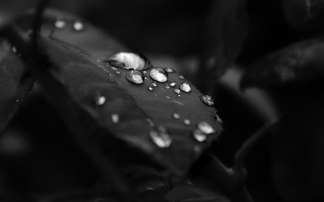 like pearls II by fluentwater