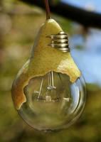 pear II by fluentwater
